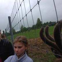 ekskursijā Zemitānu briežu dārzā